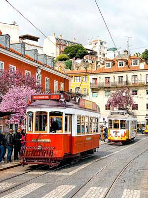 Tram 23b Stadtrundfahrt Lissabon