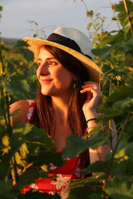 Weinfelder Kachetien Weinregion Georgien