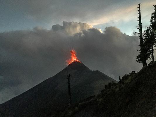 Ausblick auf den Ausbruch des Fuego Vulkans von der Campsite auf dem Acatenango