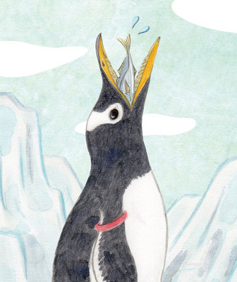ペンギンの食事