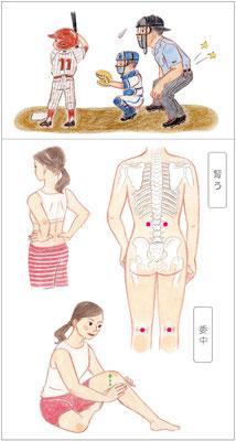 2017年6月号「腰痛」