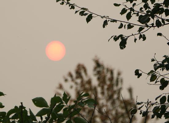 Herbstsonne in ungewöhnlicher Wetterlage