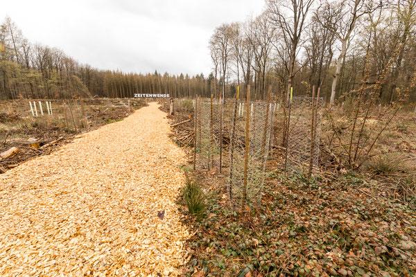 Projekt Zeitenwende durch das Regionalforstamt Rhein-Sieg-Erft, mit Unterstützung des Life-Projekts Villewälder.