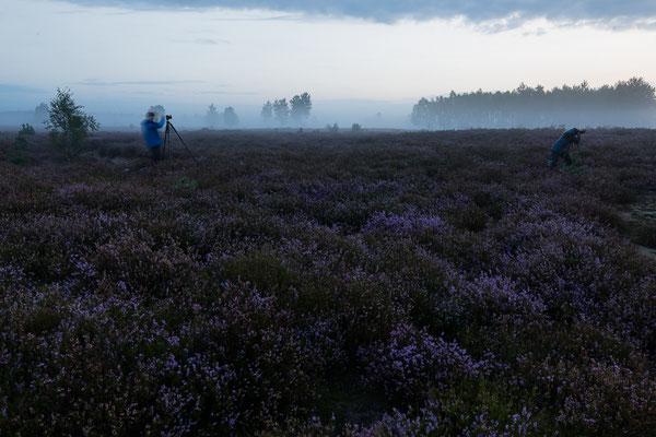 FotografInnen in der Heide - Und sie bewegen sich doch