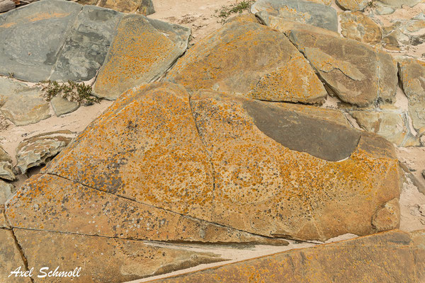Arthur-Pieman Conservation Area - Aboriginal Heritage Site