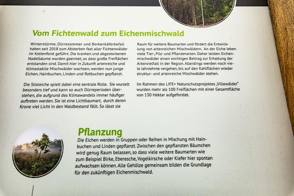 Infotafel bei Röttgen über das EU-Life-Naturschutzprojekt zur Förderung von Eichen-Hainbuchenwäldern im FFH-Gebiet und Naturschutzgebiet Kottenforst (auf 100 Flächen 130 ha).