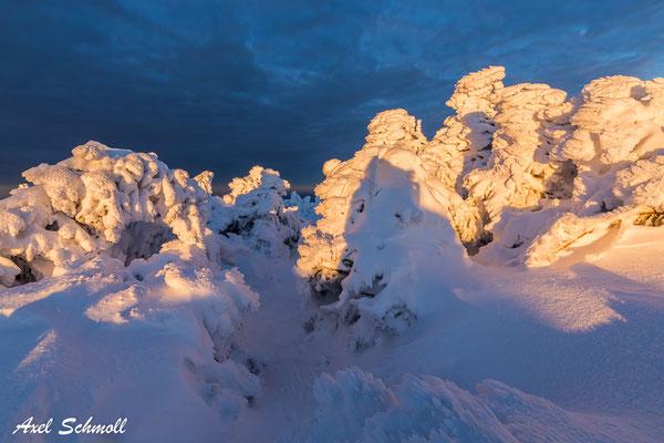 Schneegespenst im Abendlicht