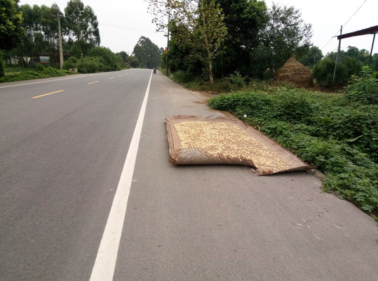 Getreidetrocknungslager an günstiger Lage...