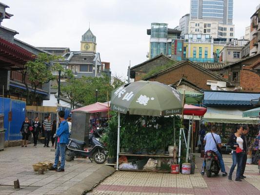 Vogel- und Blumenmarkt