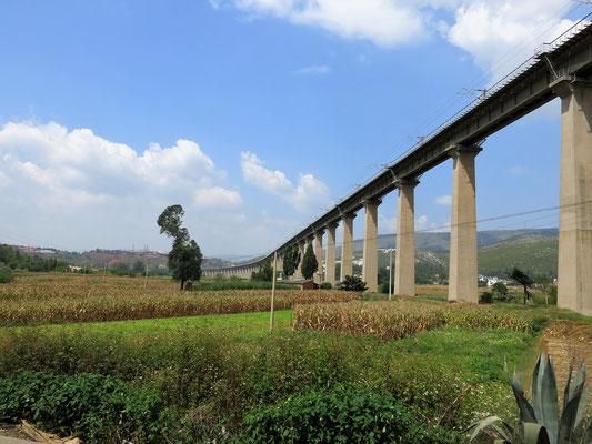 Auch der Zug bahnt sich durch diese schöne Landschaft