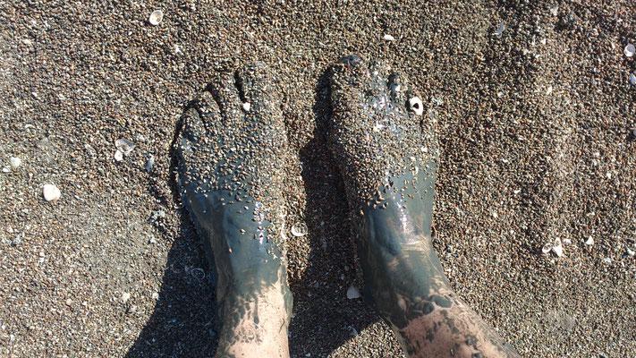 Wattlaufen ist ein Barfuß- Erlebnis