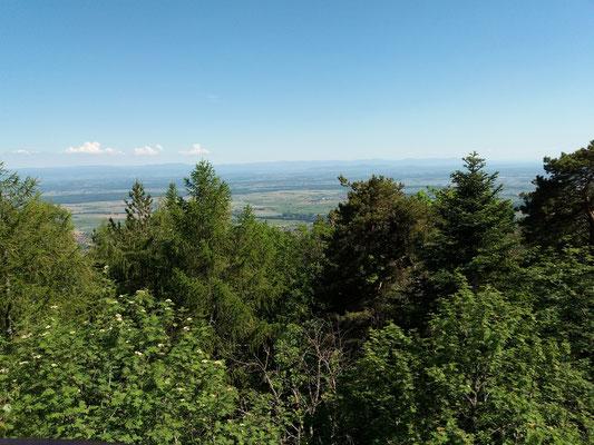 Plaine d'Alsace vue du mur païen