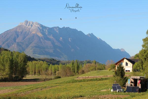 04/2014 - La roulotte sur son 2ème emplacement. Elle s'intègre parfaitement dans le paysage, avec vue sur les Massifs des Bauges et de la Chatreuse :D