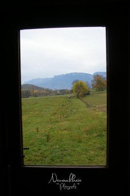11/2009 - Nouvelle vue depuis la porte d'entrée : la Chartreuse est à l'honneur !