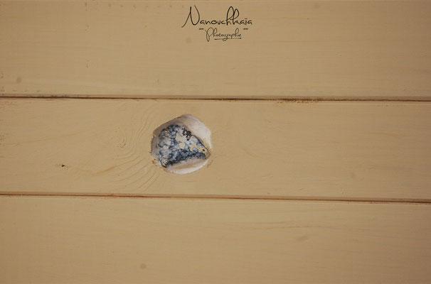 09/2009 - Plafond lambrissé puis peint, et petits cailloux danois intégrés dans les noeuds du lambri (1er prix = beaucoup de noeuds)