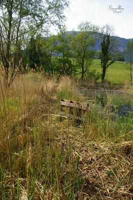 L'emplacement où la roulotte devait être installée initialement : un marais dans la Combe de Savoie.