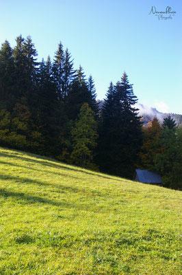Le Planolet - Parc naturel régional de Chartreuse