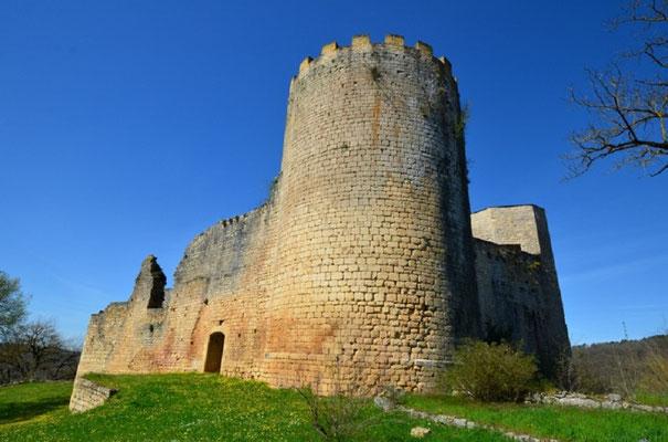 Château des Rois-Ducs