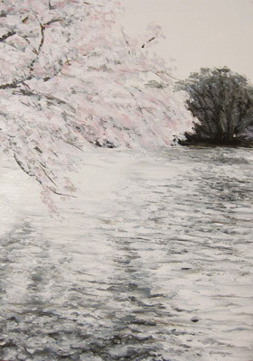 《桜と池》  B5