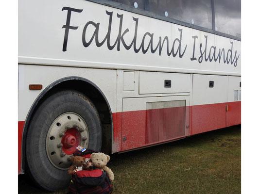 Wir - Kasimir, Cäsar, Fredi und Kerl - machen uns auf den Weg die Falklands zu erkunden.