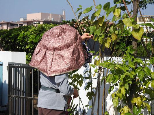 Gartenarbeit in Macao