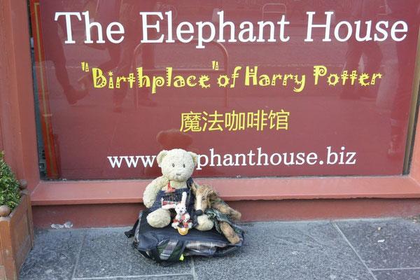 Kasimir, Cäsar und Fredi vor dem Elephant House in Edinburgh, Schottland
