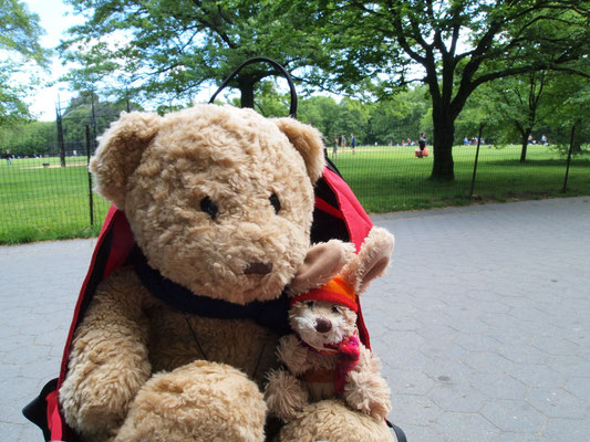 wir im Central Park, New York