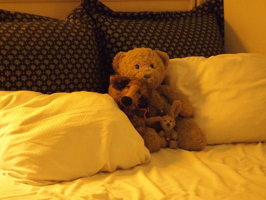 Kasimir, Cäsar und Fredi nehmen schnell noch eine Mütze Schlaf bevor es auf zum Wachwechsel nach Schloss Amalienborg, Kopenhagen, geht.