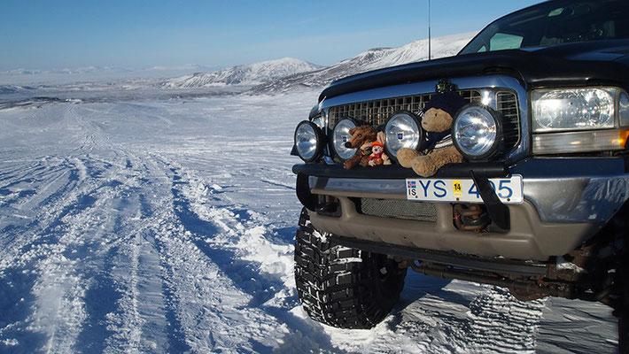 Kasimir, Cäsar und Fredi auf einem Gletscher Islands