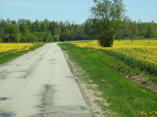 großartig - einsame Straßen und viel viel Landschaft