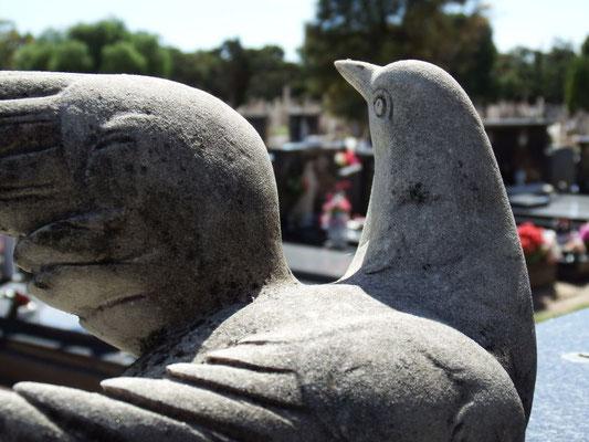 ein Besuch auf dem Friedhof Adelaides
