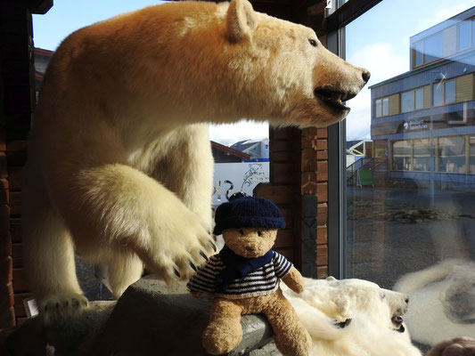 Kasimir am Fuße eines ausgestopften Eisbären