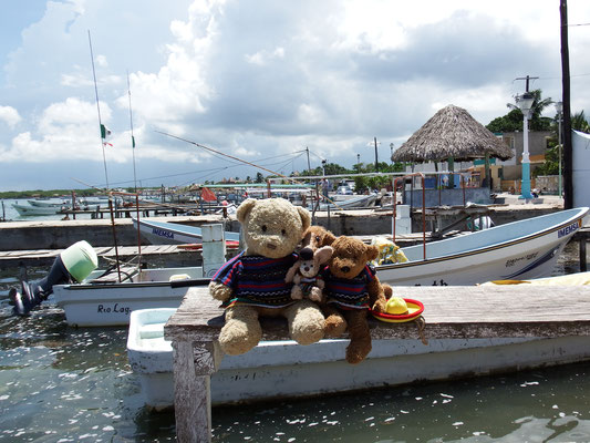 Wir, Kasimir - Cäsar - Fredi und Kerl, genießen die Idylle am Rio Lagartos - Riviera Maya - Yucatán, Mexiko