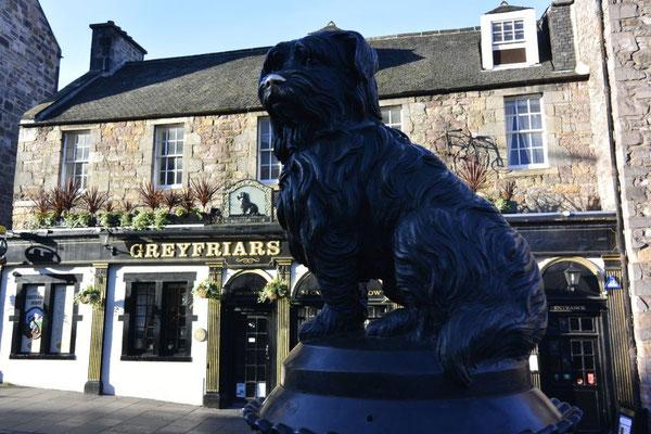Greyfriars Bobby in Edinburgh, Schottland (er soll 14 Jahre neben dem Grab seines Herrn verbracht haben)