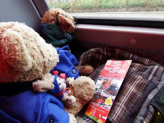 Kasimir, Cäsar und Fredi im Hop On - Hop Off Bus