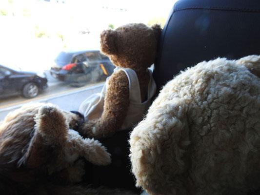 wir sammeln die erste Eindrücke von Buenos Aires auf dem Weg zum Hotel
