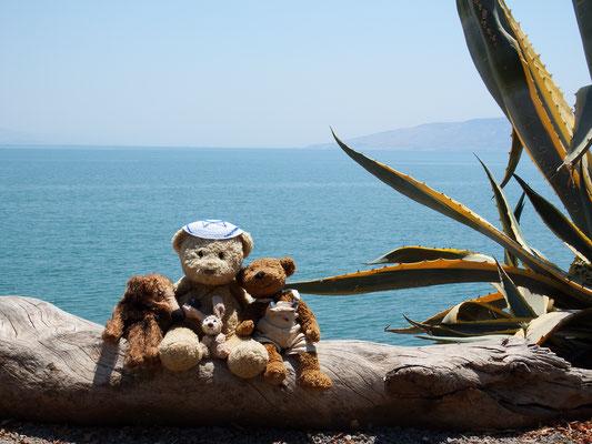 Wir, Kasimir-Cäsar-Fredi und Kerl, in Kapernaum, am Nordufer des Sees Genezareth