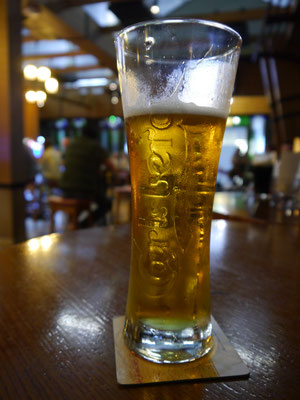 Unser Bier in Dubai ist vergoldet, stolze EUR 12,50.