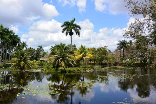 Guamá, Aldea Taina