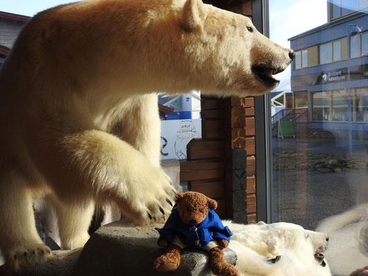 Kerl am Fuße eines ausgestopften Eisbären
