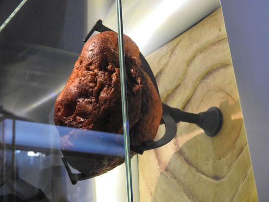 Nein, das ist kein Batzen Fleisch - das ist ein Riesenbrocken Bernstein!