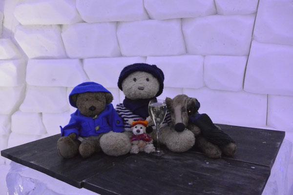 Wir - Kasimir, Cäsar, Fredi und Kerl - haben uns zur Feier statt Grog ein Glas Champagner gegönnt an der Ice-Bar im Snow Village.