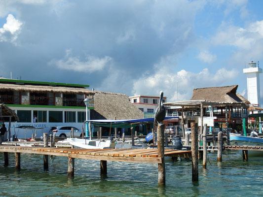 Pelikanidylle Rio Lagartos -  Riviera Maya - Yucatán, Mexiko