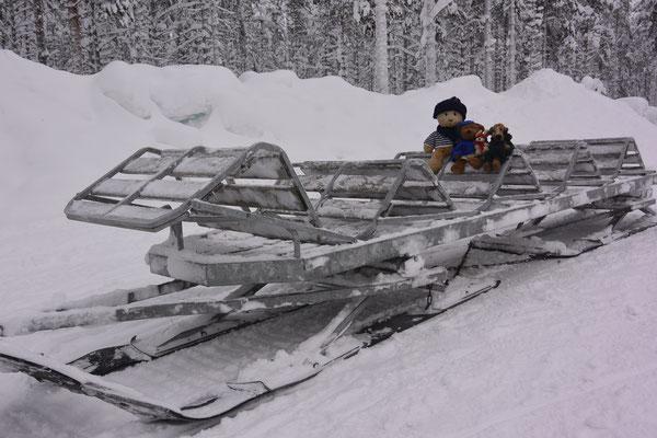 """Wir - Kasimir, Cäsar, Fredi und Kerl - auf einem """"Schlitten"""", der von Schneemobilen gezogen wird."""