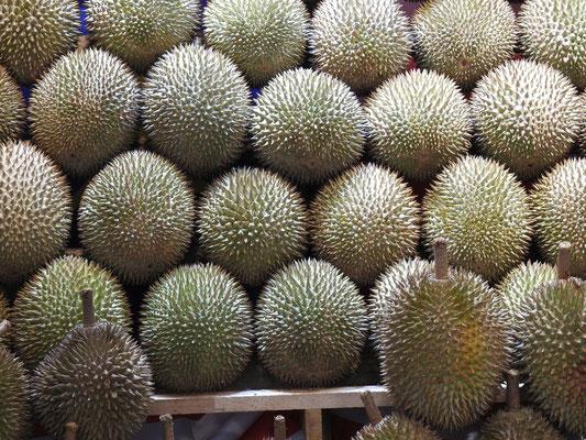 Zibetfrucht