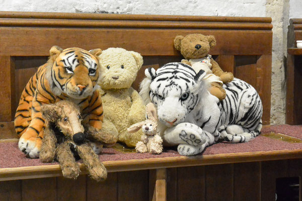 Kasimir, Cäsar, Fredi und Kerl kuscheln mit den Raubkatzen in der Kathedrale Arundels