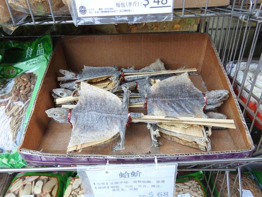 Iiih... gekreuzigte Schildkröten. Wie man die zubereitet, isst?! Wir wissen es nicht, weil wir es erst gar nicht wissen wollten.