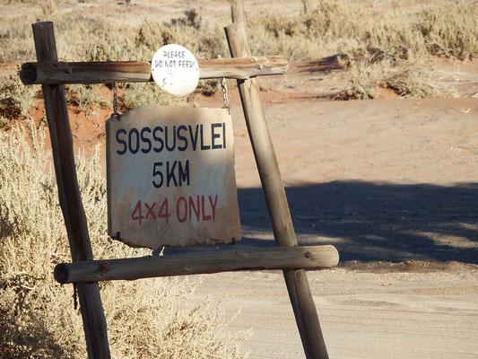 Die letzten Kilometer dürfen wir wegen des Sandes nur mit einem Jeep zurücklegen - super!