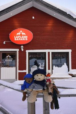Wir - Kasimir, Cäsar, Fredi und Kerl - vor dem Eingang von Lapland Safaris.