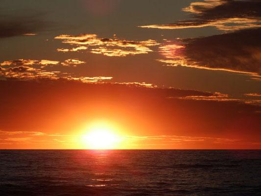 Sonnenuntergang am Strand von Adelaide